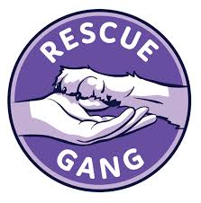 Rescue Gang Holiday Party